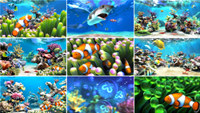 Sim Aquarium FREE! screenshot medium