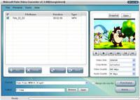 Nidesoft Palm Video Converter