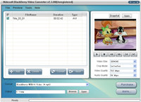 Nidesoft BlackBerry Video Converter