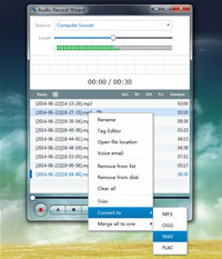 Audio Record Wizard screenshot medium