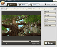 iPixSoft SWF to FLV Converter screenshot medium