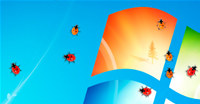 Ladybug on Desktop screenshot medium