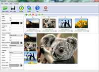 Boxoft Flash Zoom Magic screenshot medium