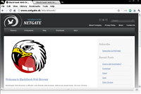 BlackHawk Web Browser screenshot medium