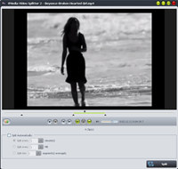 4Media Video Splitter