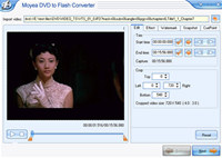 Moyea DVD to Flash Converter