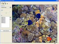 Aquarium Screensaver Maker screenshot medium