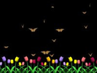 Butterfly Garden Screensaver screenshot medium