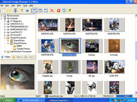 Internet Image Browser