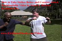 Taking Strikes Better 4 Self-Defense