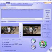 AVI to DVD (dvd-ipod.biz)