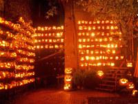Free Halloween Festival Screensaver