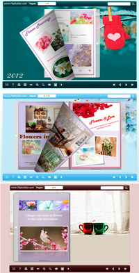 Flip_Themes_Package_float_New_Year