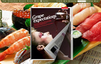 FlipBook Creator Themes Pack Classical Salmon