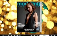Flash Magazine Themes for Light Spot Style screenshot medium