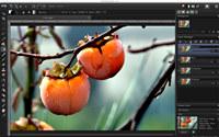 PaintSupreme for MAC screenshot medium