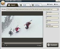 iPixSoft SWF to MPEG Converter