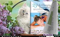Page Flip Book Theme Of Cute Cat