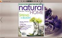 Flash Magazine Themes for Simple Elegant Style