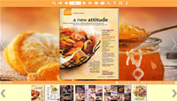 PDF to Flash templates of Orange style