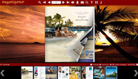 Coconut Palm Flipping Book Theme