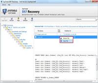 BKF Repair Software