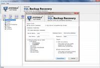Fix SQL Server Backup