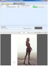 PageFlipMaker PDF to Flash Converter