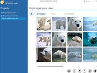 NCollector Studio Lite screenshot medium