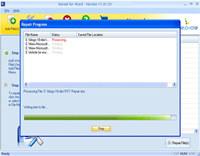 Word Document File Repair