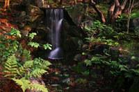 Garden Waterfall Jigsaw Puzzle