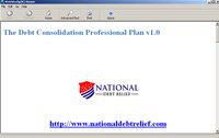 The Debt Consolidation Professional Plan