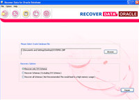 Affordable Oracle Database Recovery Tool