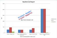 ProjectViewerReport Baseline Cost Report