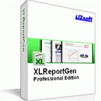 XLReportGen Professional Edition