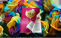 Rainbow Blossom Style Theme for 3D Book