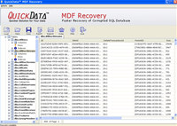 Corrupt SQL Database Recovery Tool