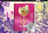 Flash Magazine Themes for Illusion Style