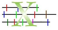 Cut 1D X