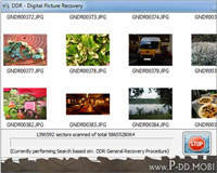 Digital Picture Rescue Tool