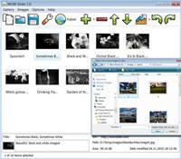JavaScript Slider Image Gallery