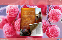 Frost Style Theme for 3D Book