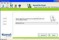 Excel 2010 File Recovery