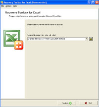 Recovery Toolbox for Excel screenshot medium