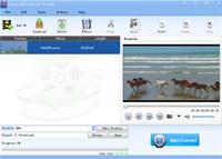 Lionsea HD Converter Ultimate