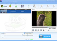 Lionsea MP4 To WMV Converter Ultimate