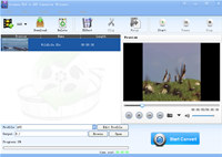 Lionsea FLV To AVI Converter Ultimate