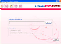 Advanced Oracle Database Recovery Tool