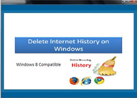 Delete Internet History on Windows