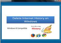 Delete Internet History on Windows